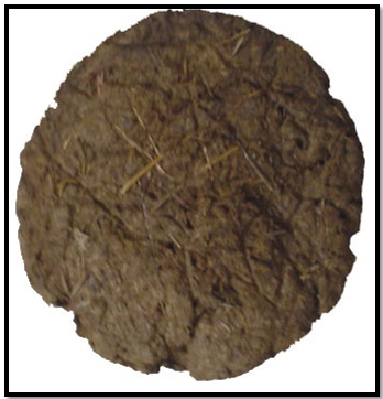 Cow_Dung for Pitra Bhog