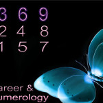 Career-&-Numerology